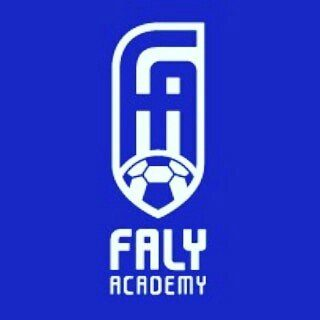 Faly Academy